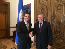 Capriles reiteró en la OEA solicitud de observación internac...