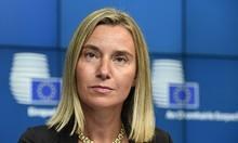 Jefa de DDHH de la Unión Europea envió carta a eurodiputados...