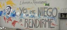 Rafaela Requesens: A un mes del secuestro del diputado a la ...