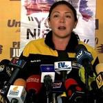 """Amelia Belisario: """"El informe Bachelet representa un gran lo..."""